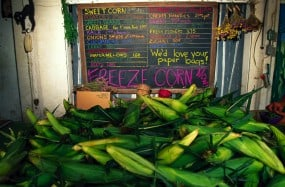 Corn sales table at Diffley's Gardens of Eagan Roadside Stand 1995