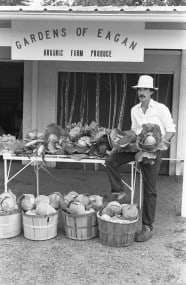 """In 1981, Eagan still had a rural community and Martin's roadside stand was called a """"community market."""" Photograph by John Croft, Minneapolis Star Tribune News Negative Collection, Minnesota Historical Society. June 31, 1981 frame 5A"""
