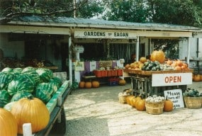 In 1990, the Gardens of Eagan roadside stand was a lean-to roof attached to the family barbershop and an adjacent walk-in cooler.