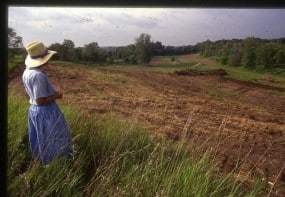 Plant cover removed in preparation for suburban development at Gardens of Eagan 1991