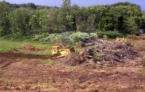 Bulldozers taking down trees in preparation for suburban development at the Gardens of Eagan